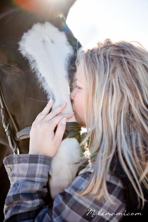 horse-1571