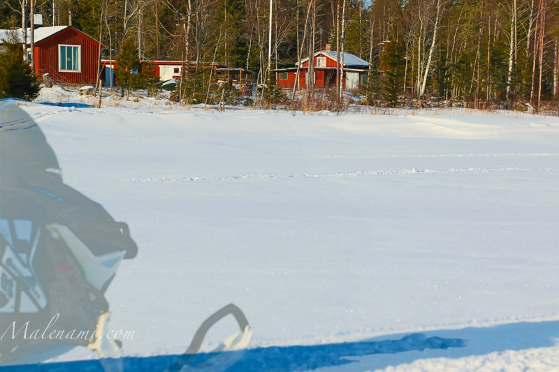 malenami-on-ice-3619