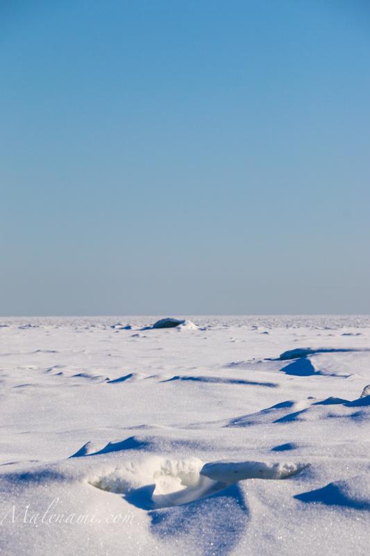 malenami-on-ice-3626